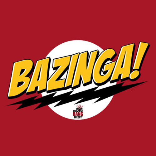 Custom Big Bang Theory Iron on Transfers (Wall & Car Stickers) No.7427