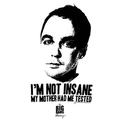 Custom Big Bang Theory Iron on Transfers (Wall & Car Stickers) No.7432