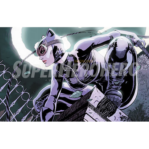 Designs Catwoman Iron on Transfers (Wall & Car Stickers) No.4914