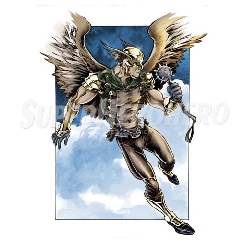 Custom Hawkman Iron on Transfers (Wall & Car Stickers) No.7649