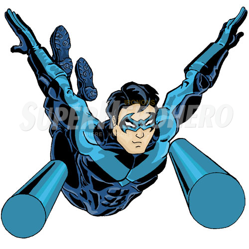 Designs Nightwing Iron on Transfers (Wall & Car Stickers) No.5052