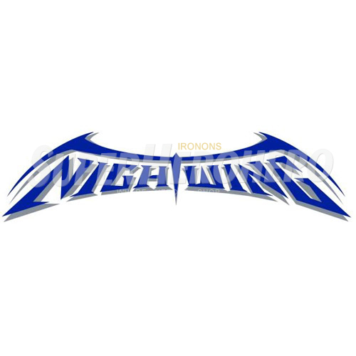 Designs Nightwing Iron on Transfers (Wall & Car Stickers) No.5058