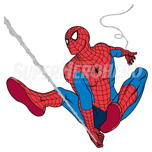 Designs Spiderman Iron on Transfers (Wall & Car Stickers) No.4594