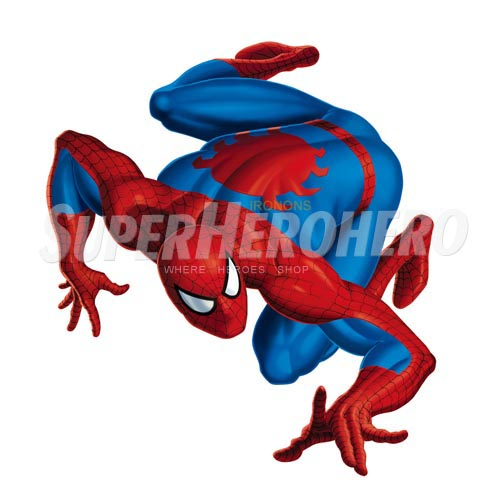 Designs Spiderman Iron on Transfers (Wall & Car Stickers) No.4615