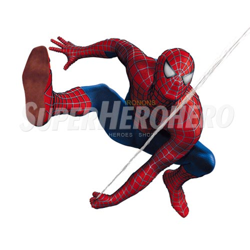 Designs Spiderman Iron on Transfers (Wall & Car Stickers) No.4621