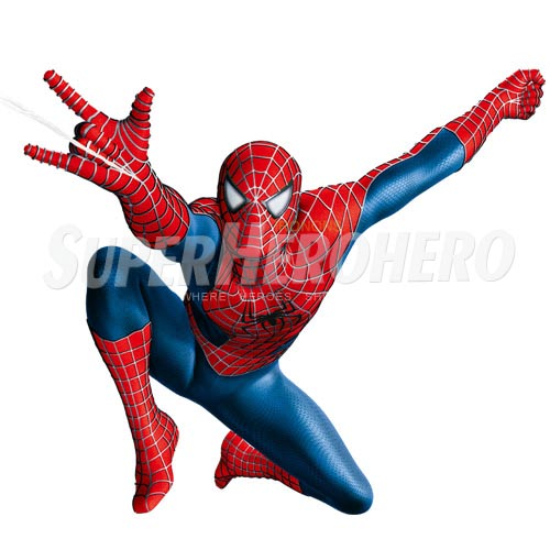 Designs Spiderman Iron on Transfers (Wall & Car Stickers) No.4637