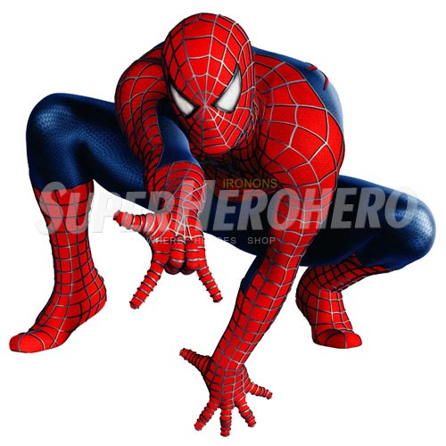 Designs Spiderman Iron on Transfers (Wall & Car Stickers) No.4642